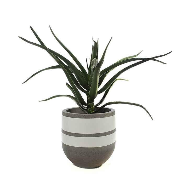 Picture of DOUBLE BAND POT - TALL