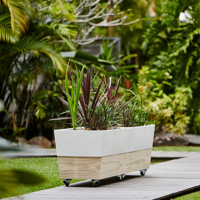 Picture of Glowpear Double Café Planter