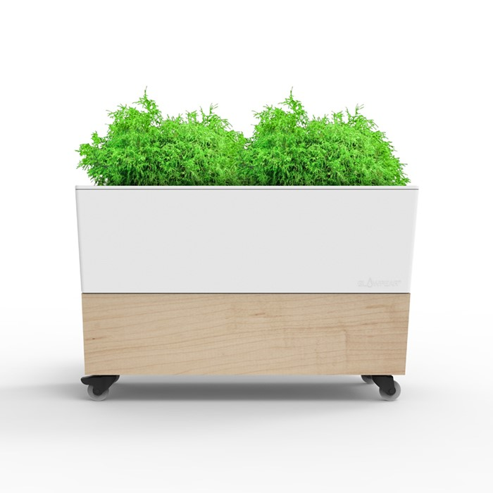Picture of Glowpear Single Café Planter