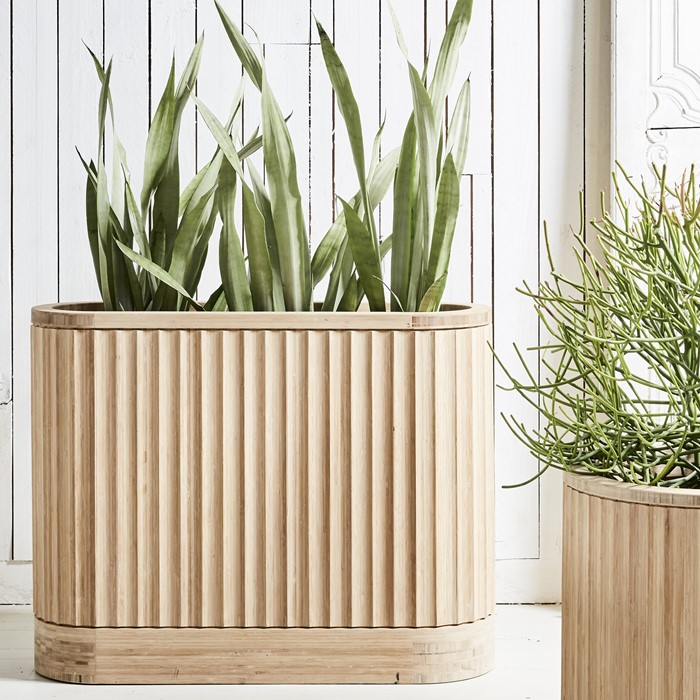 Picture of Bamboo Trough Pleat ARD Pot