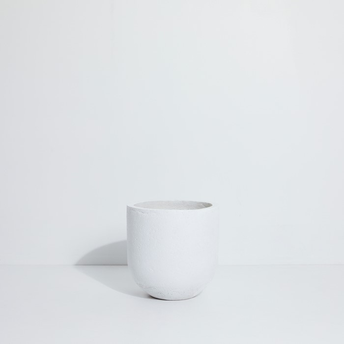 Picture of Arlo Pot