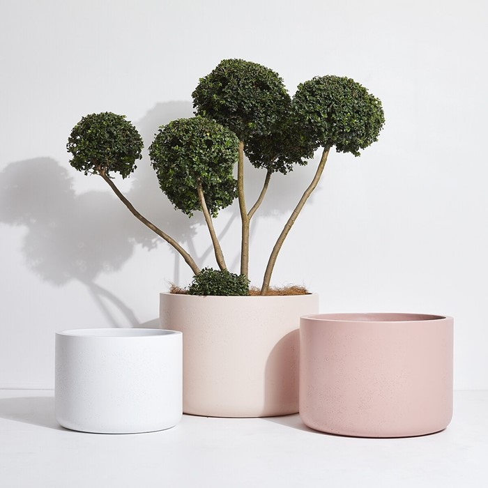 Picture for category REGULAR POTS